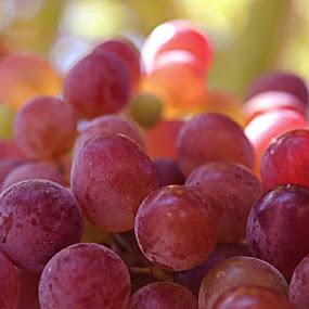by Şahin Kaplan - Food & Drink Fruits & Vegetables