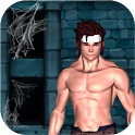 Dungeon Raider - Endless Run icon