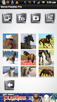 Screenshot of FREE Horse Puzzles