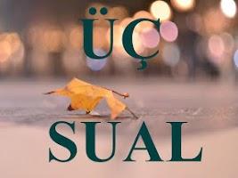 Screenshot of Uch Sual