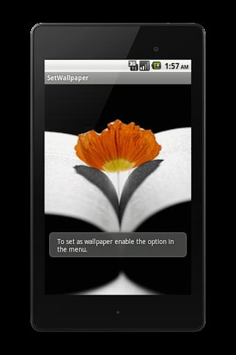 【免費個人化App】Mil Fotos e Imagens Wallpaper-APP點子