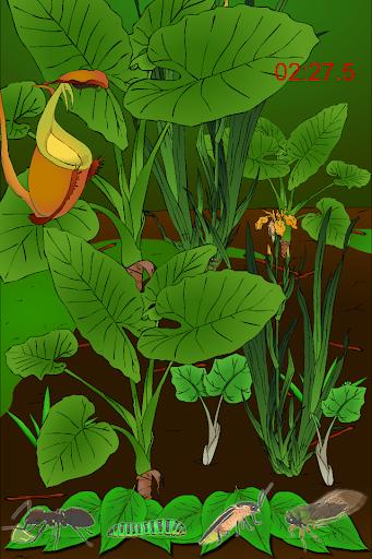 寻找隐藏的东西游戏:昆虫