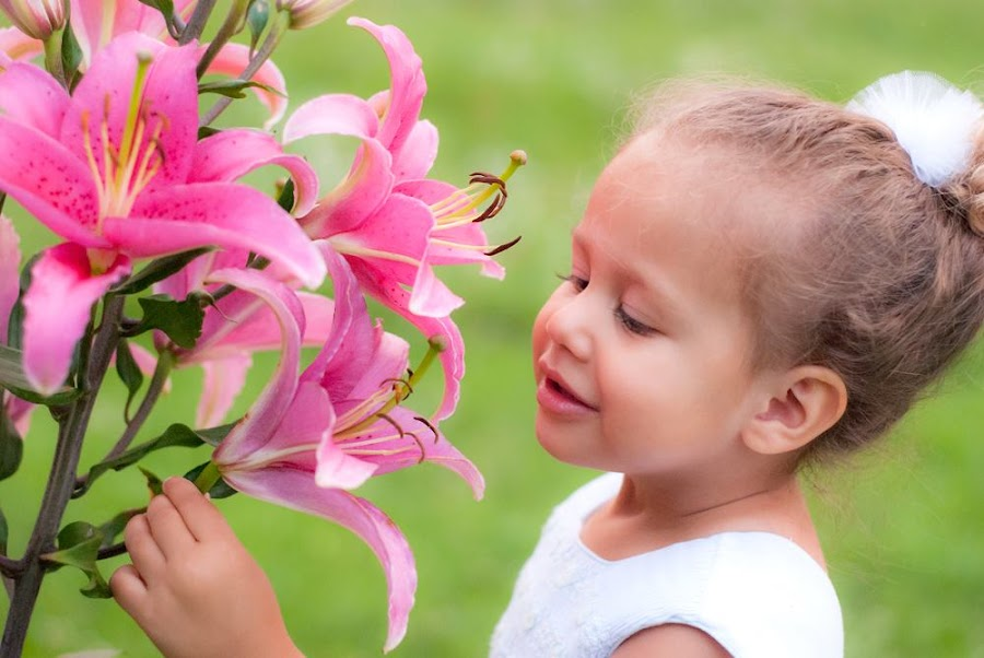 Lily with the lilies. by Ashley Rodriguez - Babies & Children Child Portraits