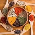 Culinary Language Pocket Guide icon