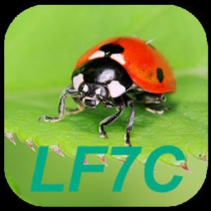 LF7C Calculateur de Loto Foot