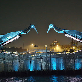 Mechanical Cranes #1 by Koh Chip Whye - Artistic Objects Other Objects (  )