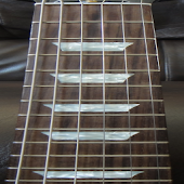 Electric Guitar Fretboard