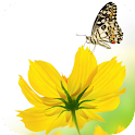 SPRING HD LIVE WALLPAPER PRO logo