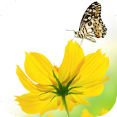 SPRING HD LIVE WALLPAPER PRO