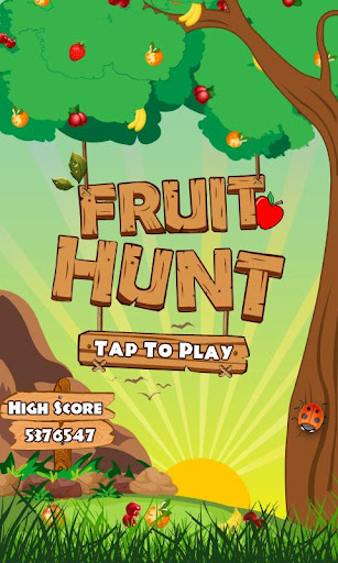 Fruit Hunt : Catch the Fruits