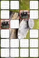 Screenshot of Matcheasy (Animals)
