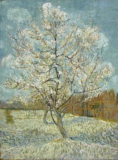 Van Gogh Museum — Google Arts & Culture