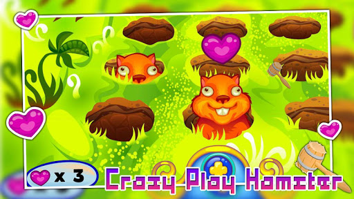 Crazy play hamster