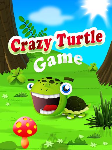 Crazy Turtle
