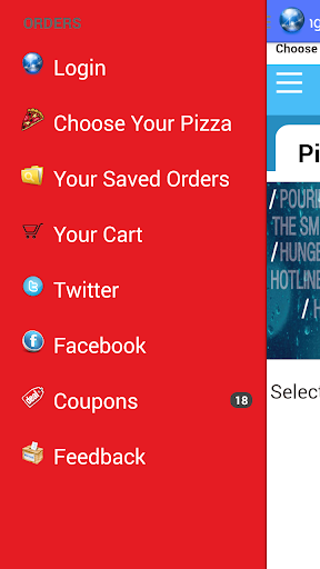 Dominos Pizza Order India