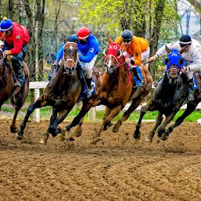 The Four Horsemen by Bob Grandpre - Sports & Fitness Other Sports ( jockeys, corner, horses, racing, horse, track,  )