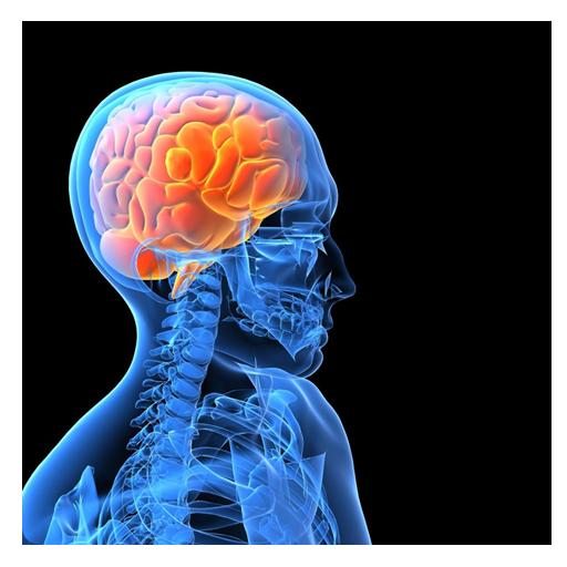Yoga for Epilepsy LOGO-APP點子