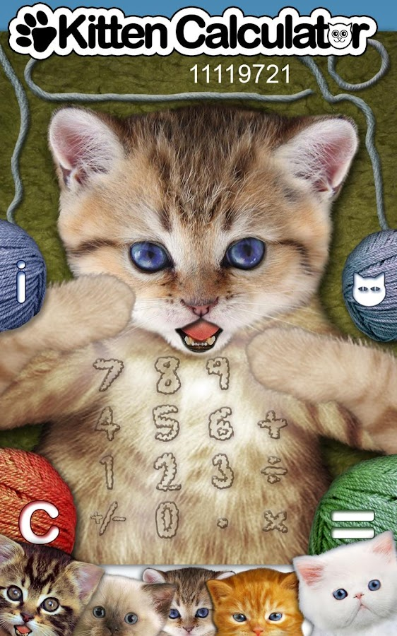 Kitten Calculator Lite - screenshot