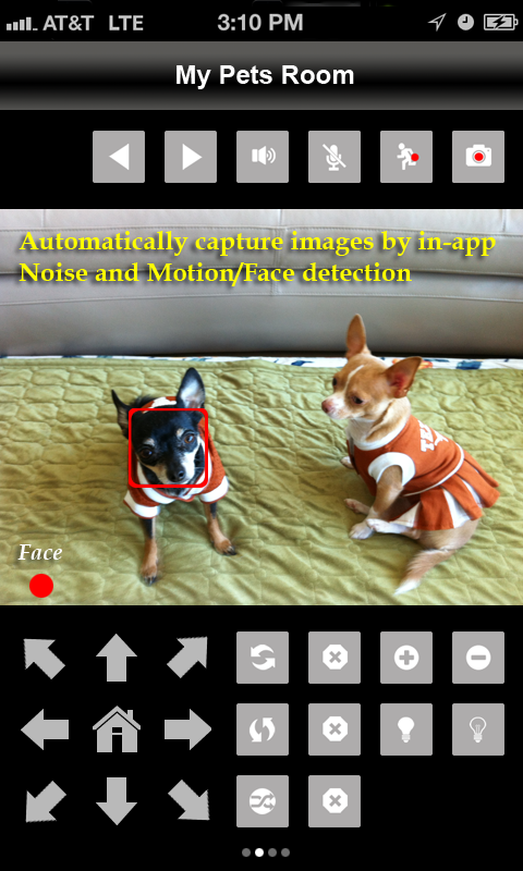 uViewer for D-Link Cameras - screenshot