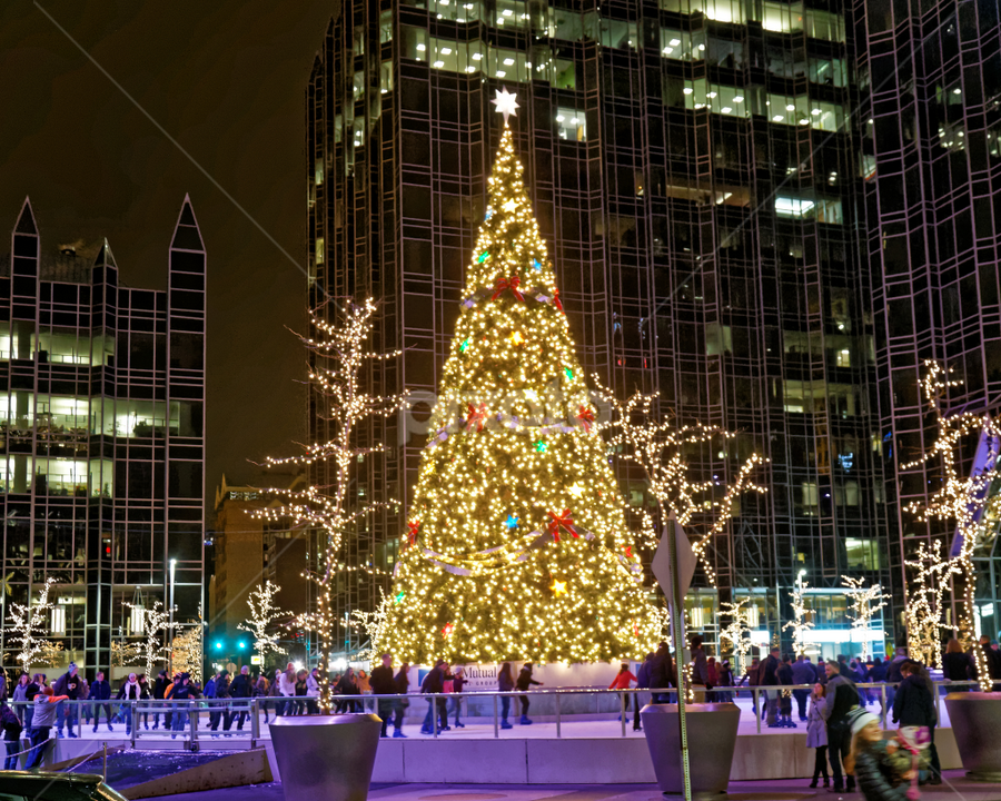 by Patrick Sherlock - Public Holidays Christmas
