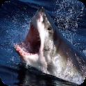 Shark – PuzzleBox logo