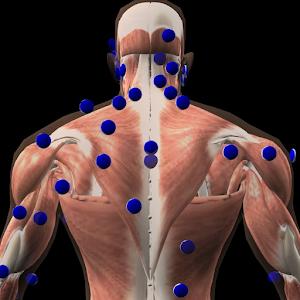 3D Trigger Points 醫療 App LOGO-APP試玩