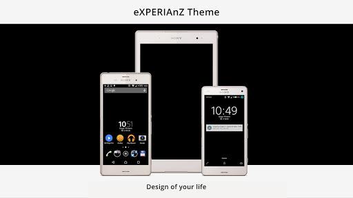 Theme eXp - Black PRO L