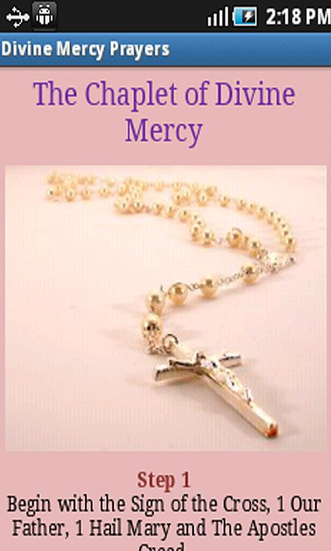 Divine Mercy Prayers- screenshot