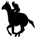 Horse Racing Made Easy icon