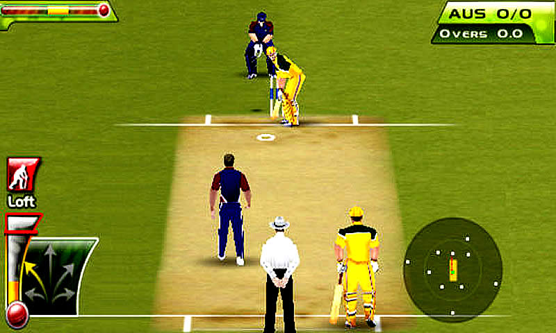Cricket T20 Fever 3D- screenshot