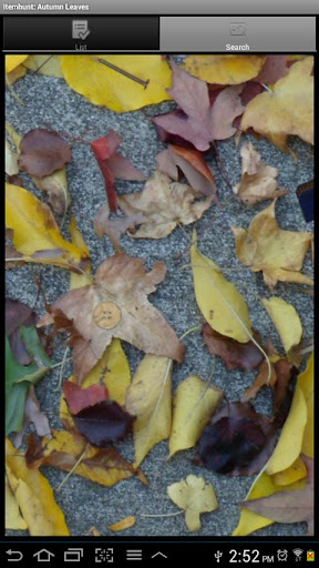Itemhunt: Autumn Leaves DEMO