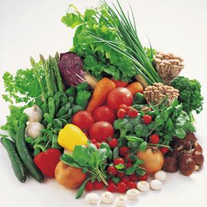 体によく効く食材大事典