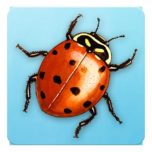Animal Name Game Preview LOGO-APP點子