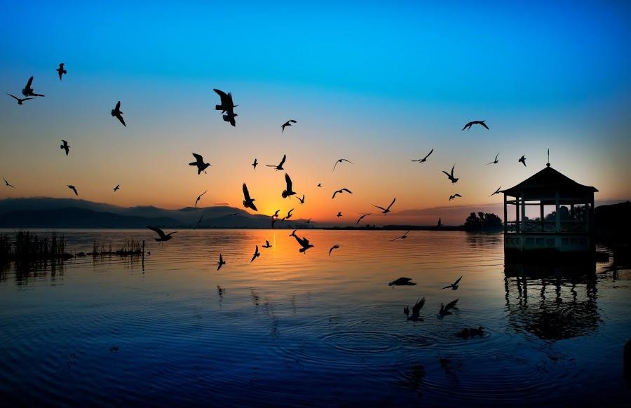 Il mio lago all'alba by Roberto Paglianti - Landscapes Weather