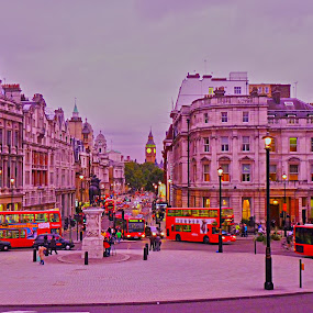 Busy Trafalgar by Primož Ogorevc - City,  Street & Park  Street Scenes ( london )