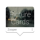 Picture Cards Zooper