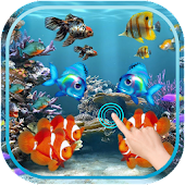 Magic Wave : Fish Aquarium