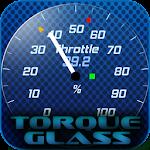 Torque Theme Glass OBD 2