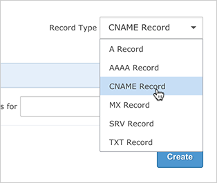 CNAME Record Type drop-down option