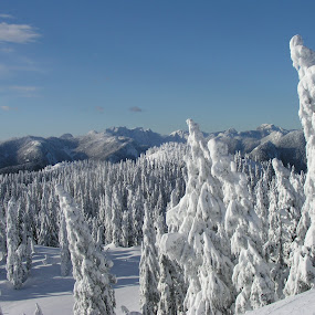 Mt.Seymour by Branimir Ficko - Landscapes Mountains & Hills
