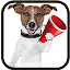 Dog Sounds 6.4 APK for Android