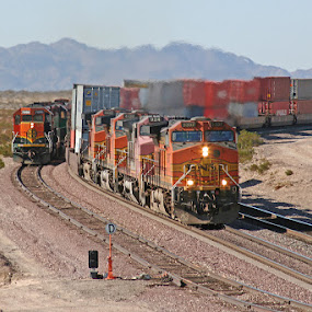 Double stack train in Mojave Desert by Claes Wåhlin - Transportation Trains ( mojave desert, multiple diesels, double stack, container, usa,  )