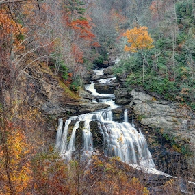 Cullasaja Falls  by Drew Campbell - Landscapes Waterscapes ( waterfall, smoky mountains )