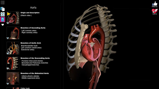 Anatomy Learning - 3D Atlas app (apk) free download for Android/PC/Windows screenshot