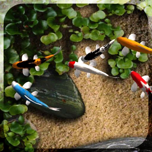 Raindrops Live Wallpaper: Fully Interactive Water