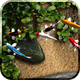 Koi Free Live Wallpaper file APK Free for PC, smart TV Download
