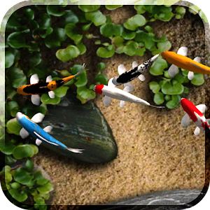 App Koi Free Live Wallpaper APK for Windows Phone