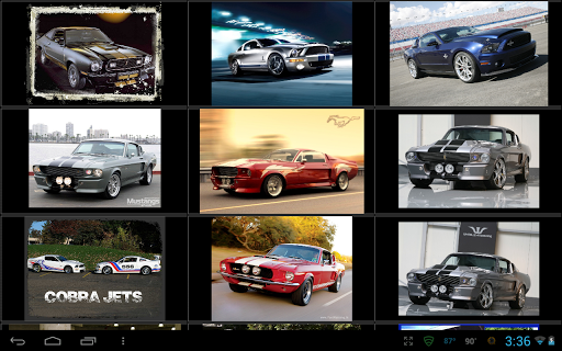 Shelby Mustang Wallpapers