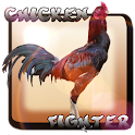 Chicken Fighter Indonésia icon