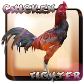Chicken Fighter Indonésia